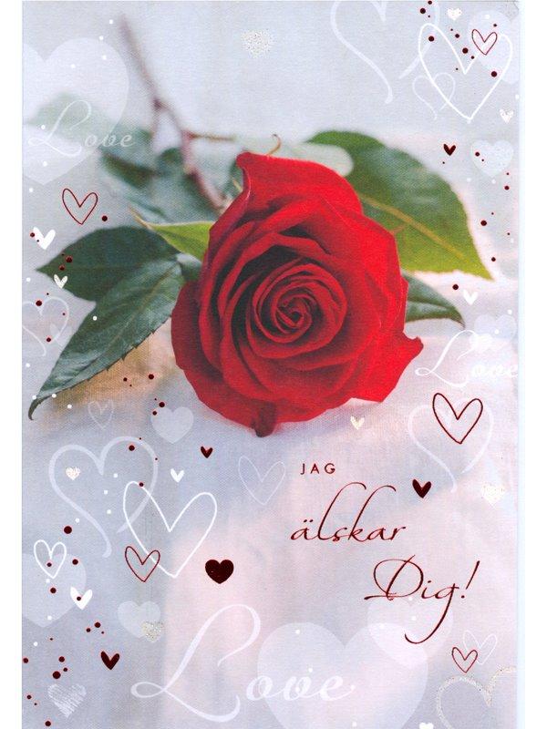 rosor jag älskar dig